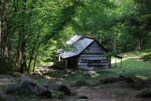 Gatlinburg Trip 2015 #2 041