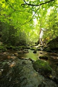 Gatlinburg Trip 2015 #2 175