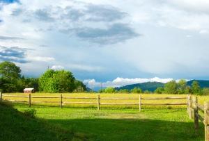 Gatlinburg Vacation 2015 112
